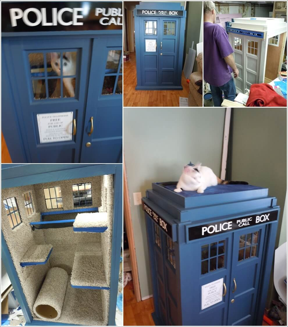 Look! Here is A Cool Tardis Cat Fort Project 1