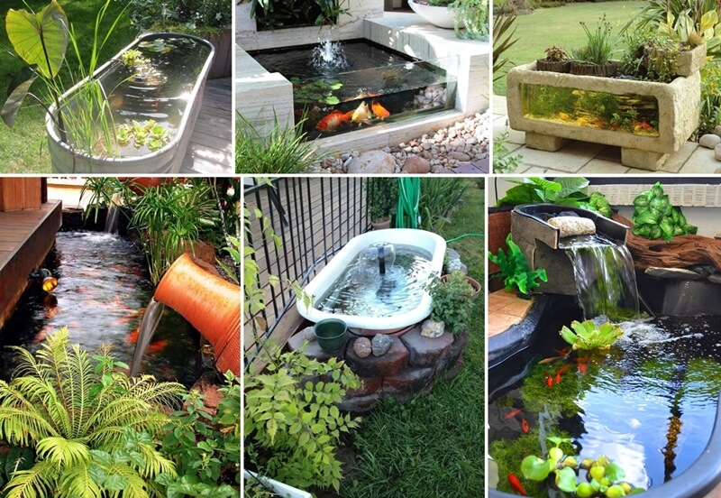 Over 21 beauteous backyard aquarium ideas for Estanque koi pequeno
