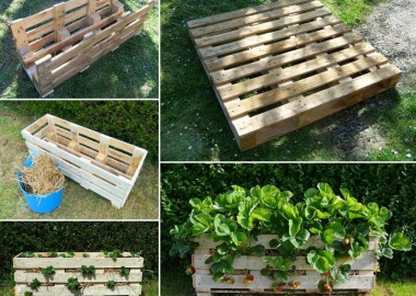 Make This amazing Strawberry Planter from a Single Pallet fi