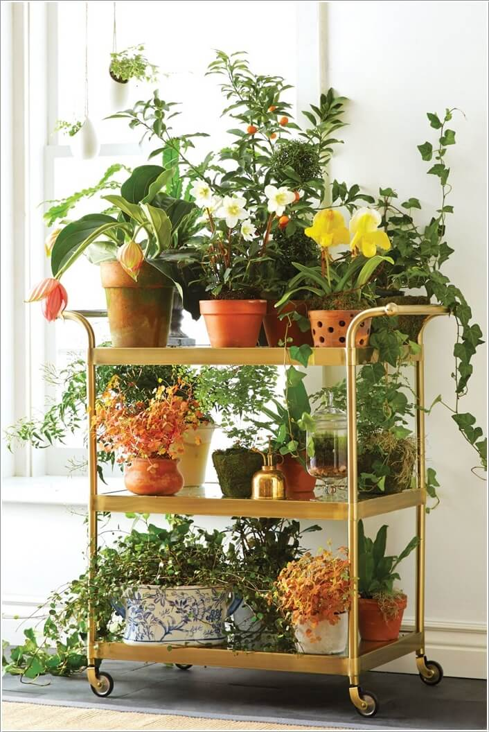 13 Fresh Ideas for Indoor Planter Stands on Amazing Plant Stand Ideas  id=34205