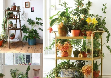 13 Fresh Ideas for Indoor Planter Stands fi