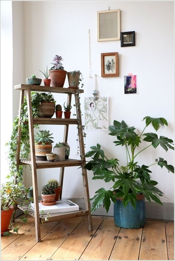 13 Fresh Ideas for Indoor Planter Stands 5