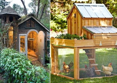7 Chicken Coop Designs That Are Simply Amazing fi