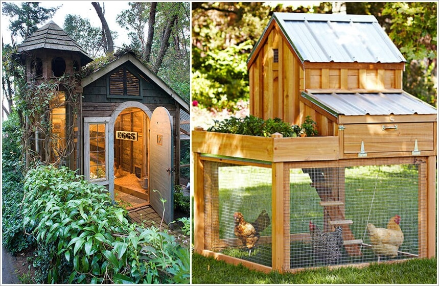 chicken coop designs that are simply amazing 1