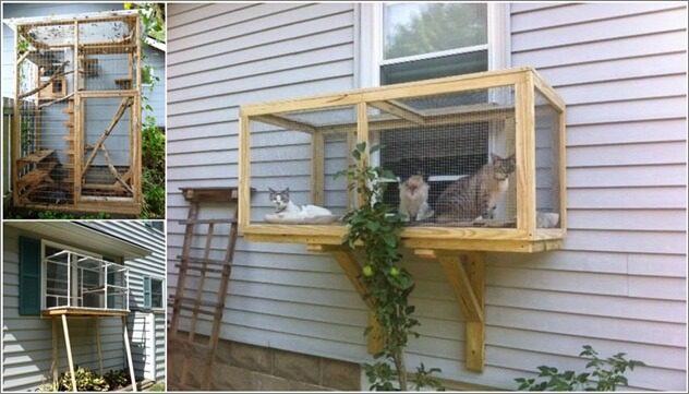 Build a Catio for Your Cat to Enjoy 1