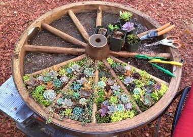 10 Things to Use for Making a Round Garden Bed fi