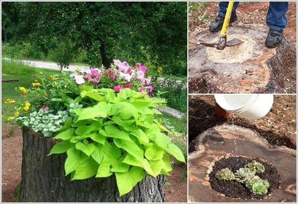 10 Absolutely Wonderful Tree Stump Landscaping Ideas 8
