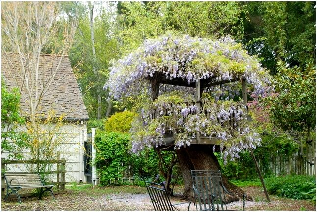 10 Absolutely Wonderful Tree Stump Landscaping Ideas 1
