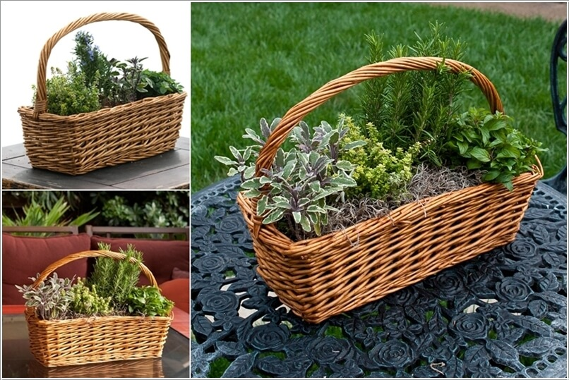 12 Cool Small Herb Gardens That Won't Take Much Space 11