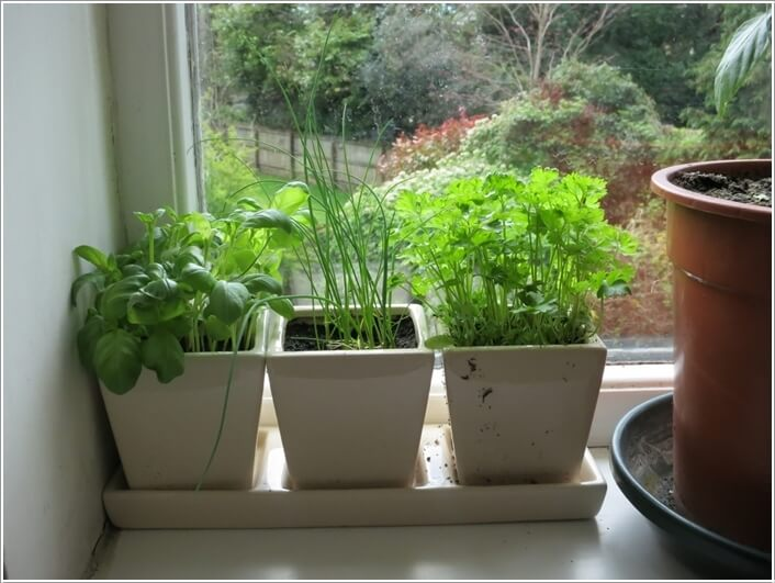 12 Cool Small Herb Gardens That Won't Take Much Space 12