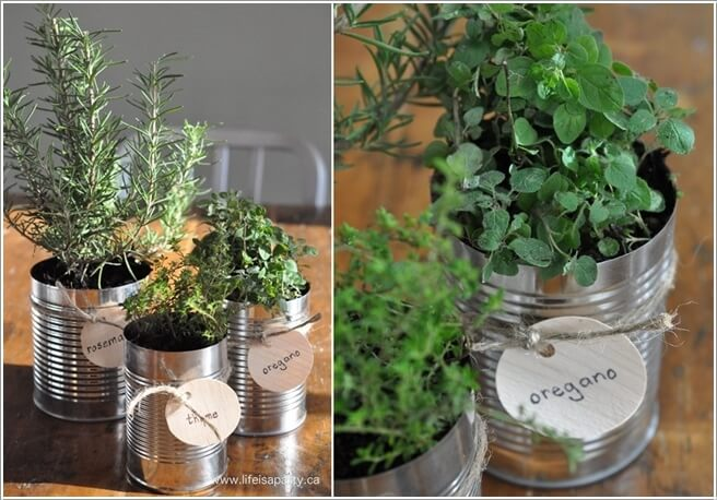 12 Cool Small Herb Gardens That Won't Take Much Space 9