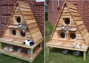 10 Super Cool Cat Houses and Cabins for Your Kitty fi