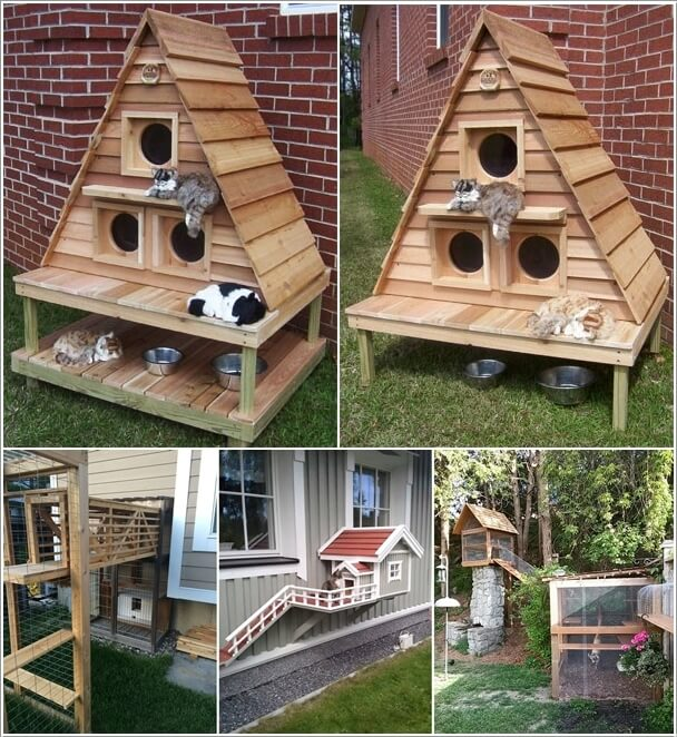 Cool 10 Super Cool Cat Houses And Cabins For Your Kitty Largest Home Design Picture Inspirations Pitcheantrous