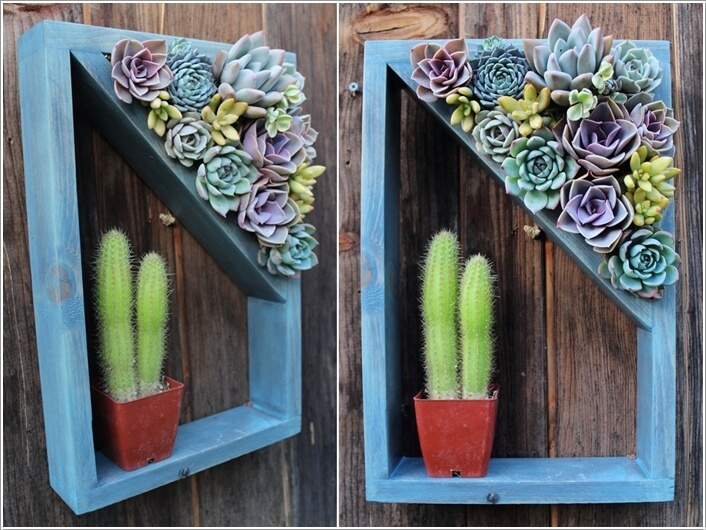 10 Cool Succulent Planter Ideas for Your Home 5