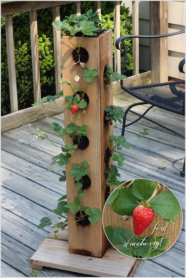 10-small-garden-ideas-for-your-balcony-10