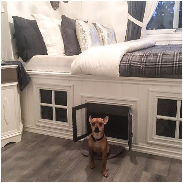 10-cool-diy-pet-projects-for-your-furry-friends-1