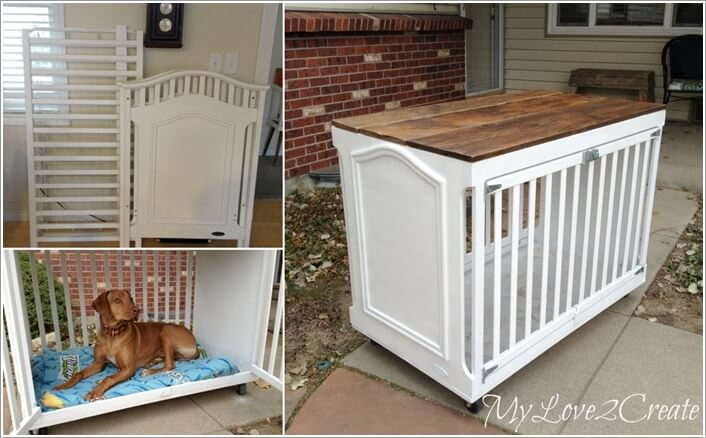 10-cool-diy-pet-projects-for-your-furry-friends-4