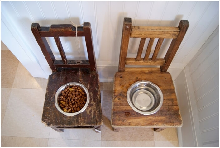 10-cool-diy-pet-projects-for-your-furry-friends-5