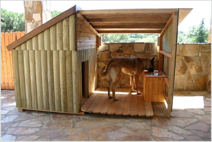 10-cool-diy-pet-projects-for-your-furry-friends-7