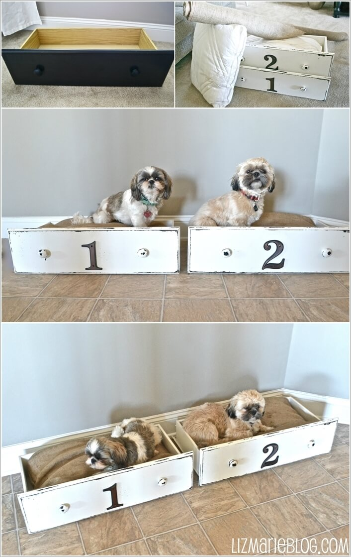 10-cool-diy-pet-projects-for-your-furry-friends-8