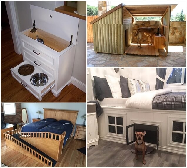 10-cool-diy-pet-projects-for-your-furry-friends-a