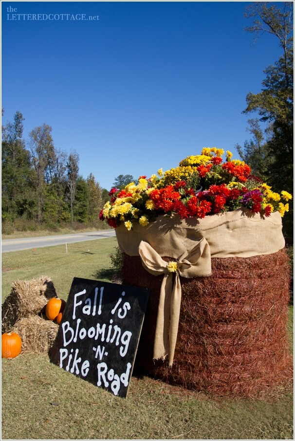 10-creative-projects-to-make-from-hay-bales-this-fall-4