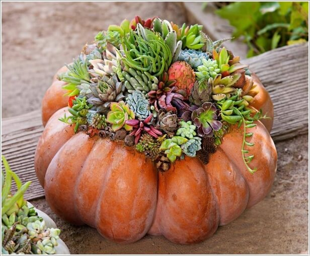 10-creative-ways-to-craft-pumpkin-centerpieces-this-fall-1