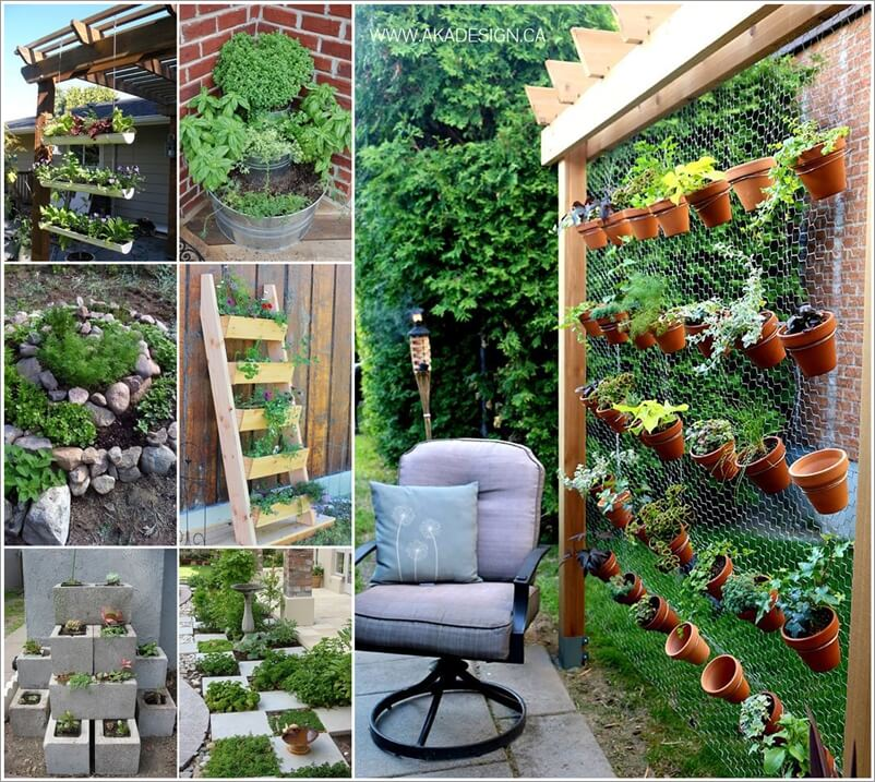 Grow a Wonderful Herb Garden in Your Backyard