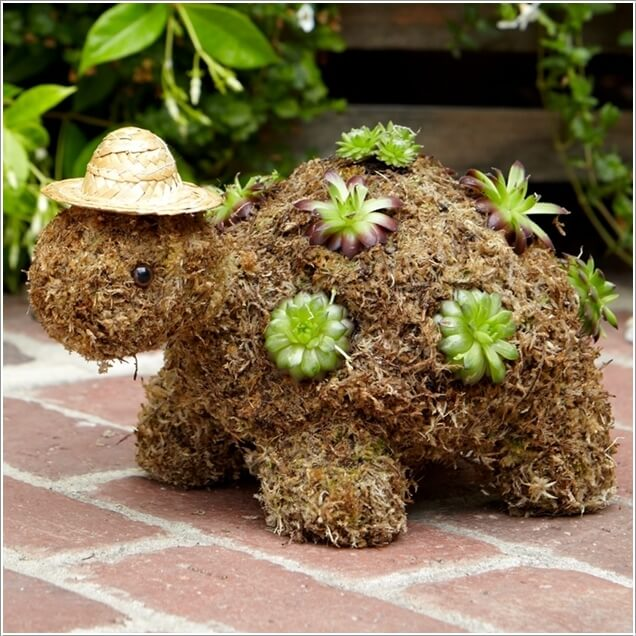 1 make a turtle succulent topiary like this one