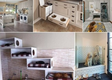 Carve Out Some Space in Your Laundry Room for Your Pets fi