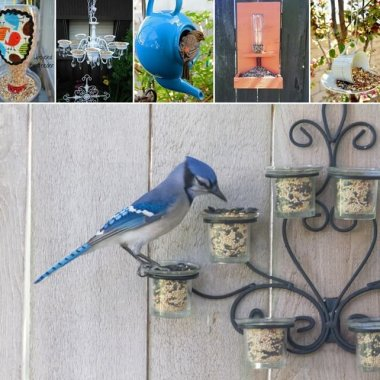 Easy Upcycled Bird Feeders for Your Garden fi