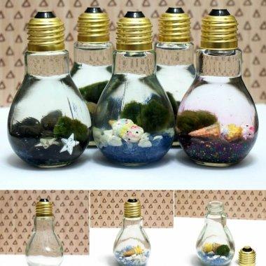 DIY Light Bulb Aquarium fi