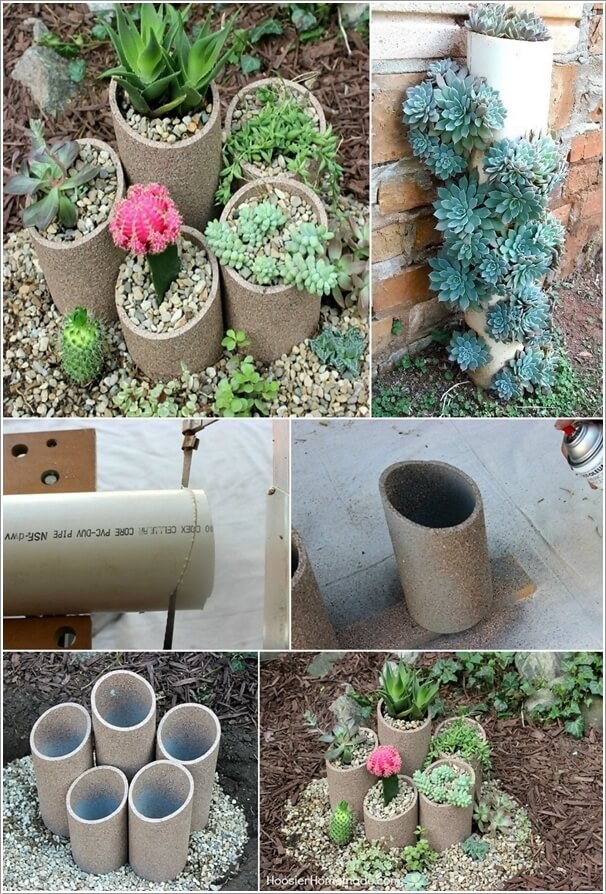15 Unique Ways To Display Succulents