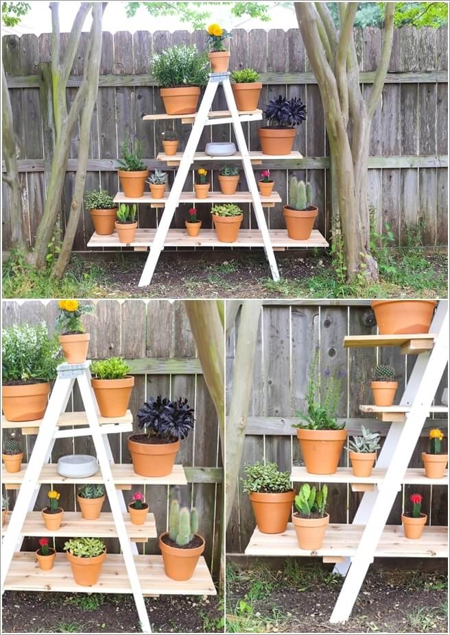 Put All Your Cactus Planters On A Ladder