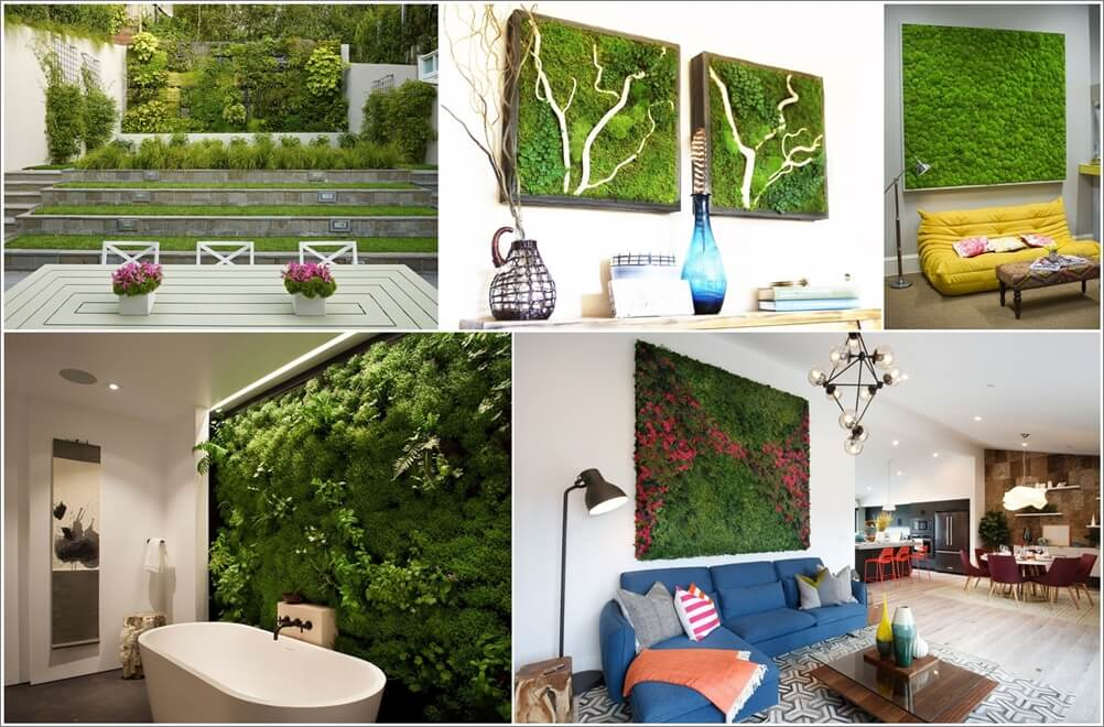 Add Vitality to Your Home with Moss Walls