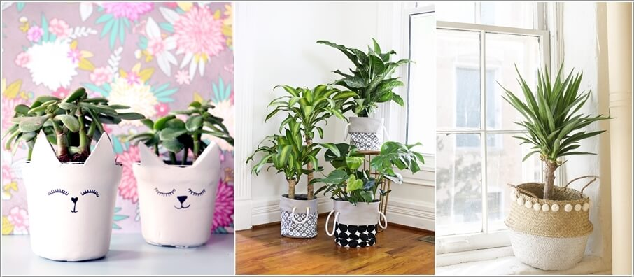 Pot Cover Ideas for Your Indoor Plants