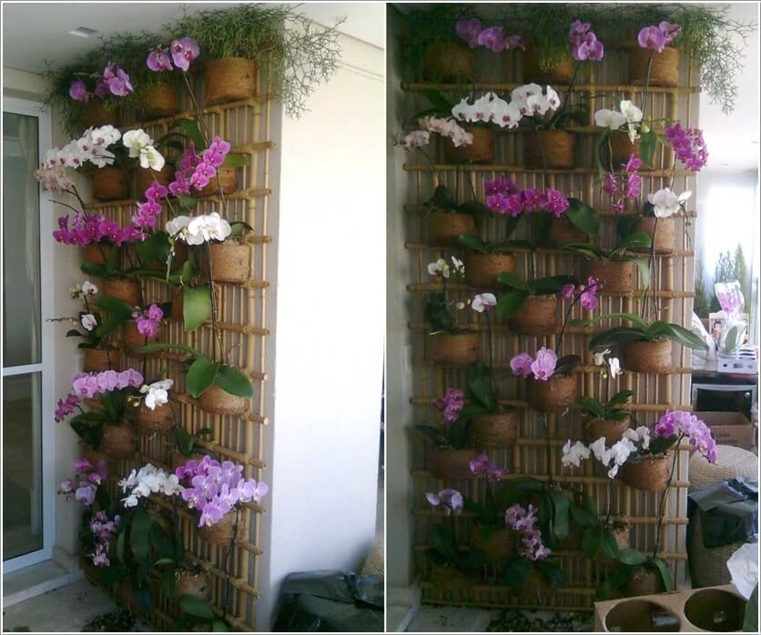 Ideas to Design a Vertical Garden
