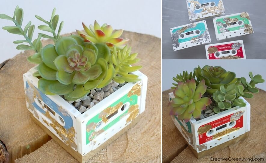Recycled Succulent Planter