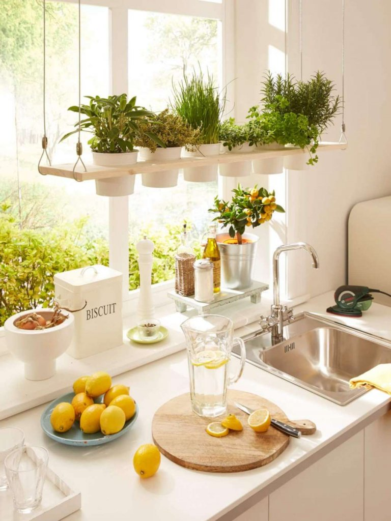 Indoor Kitchen Herb Gardens