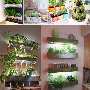 Indoor Kitchen Herb Gardens