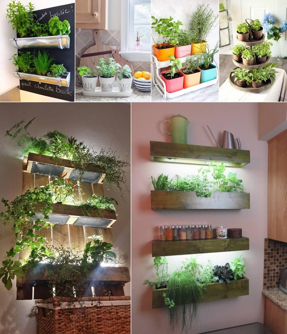 10 Amazing Indoor Kitchen Herb Gardens