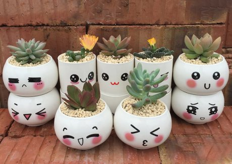Cute Planter Ideas