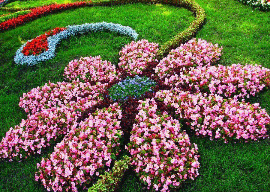 Landscaping Ideas With Flowers