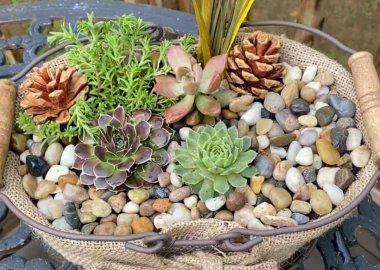 burlap planter