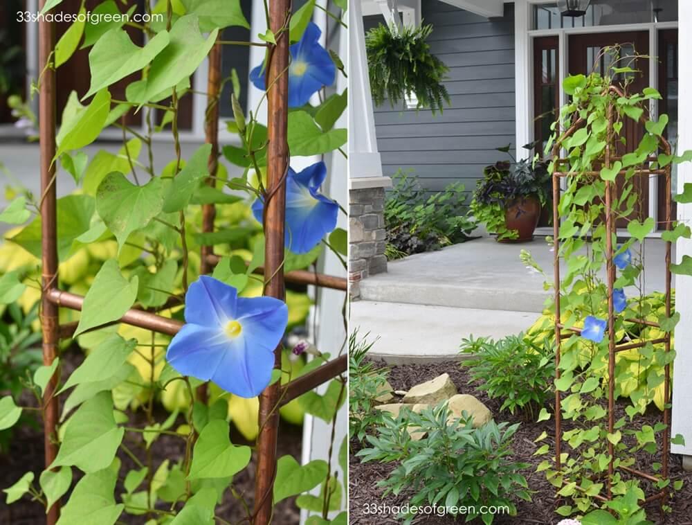 DIY Garden Trellis Ideas