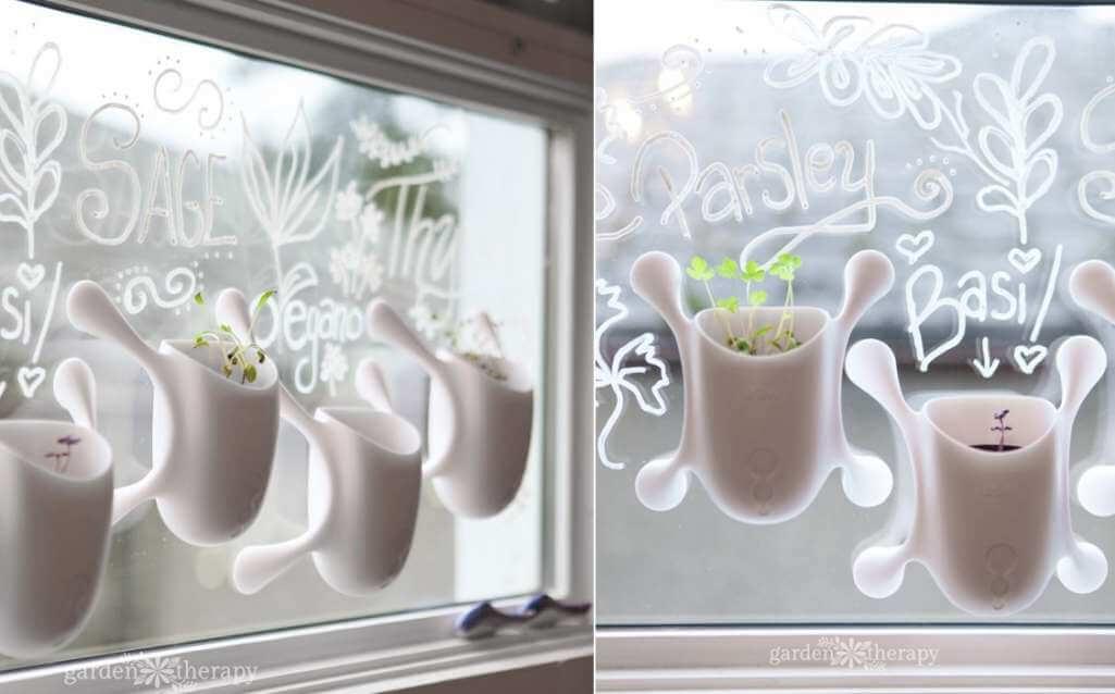 Window Sill Herb Garden Ideas