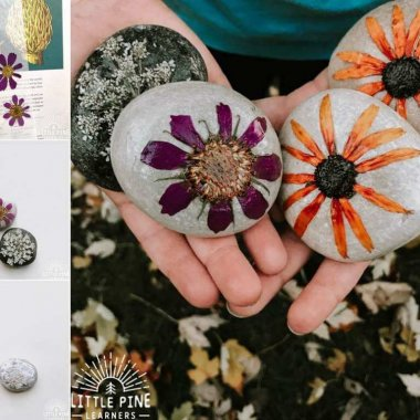 Pressed Flower DIY Crafts